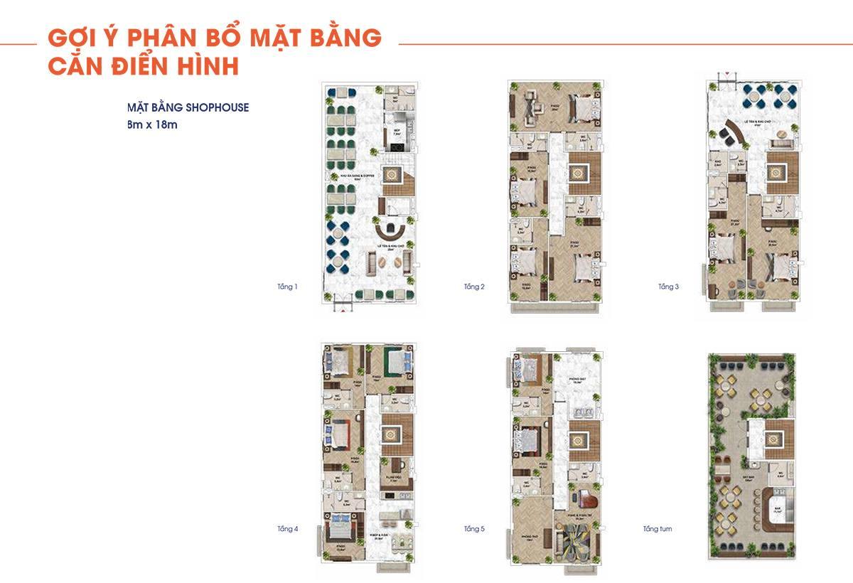 Mặt bằng thiết kế các căn shophouse với diện tích 8mx18m.